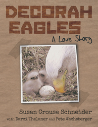 Decorah Eagles cover