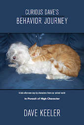 Curious Dave's Behavior Journey cover